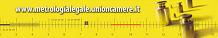 metrologia legale unioncamere logo
